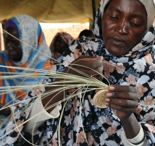 Unpacking complexity in international development